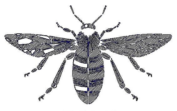 Bee-logo-engraving
